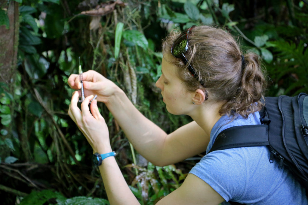 Costa Rica Wilderness First Responder (WFR) course