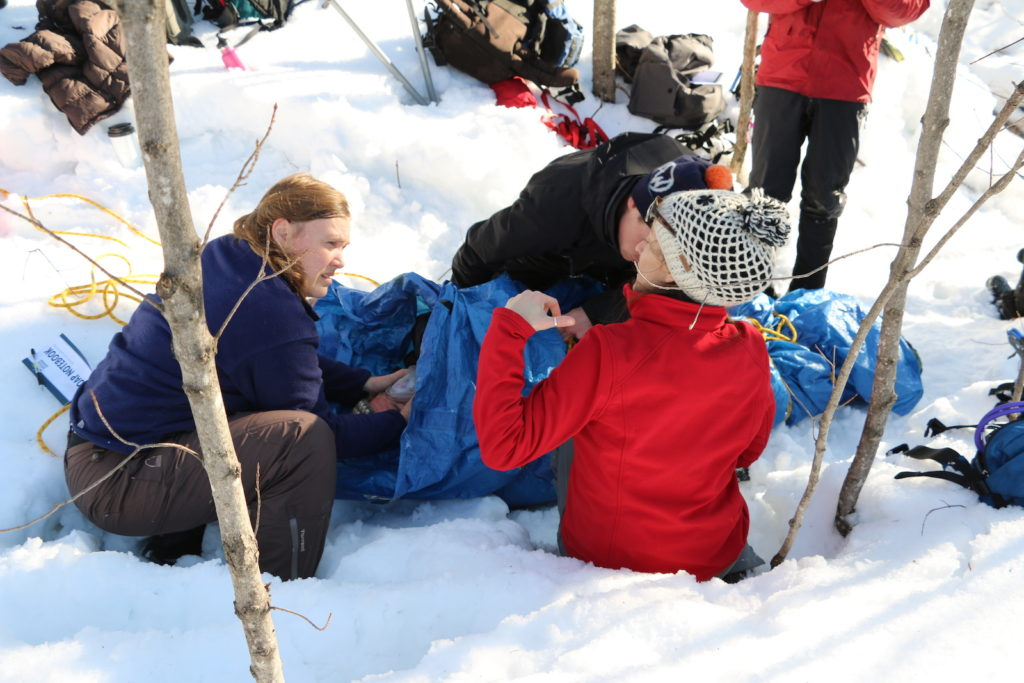 students at work in Wilderness First Responder simulation